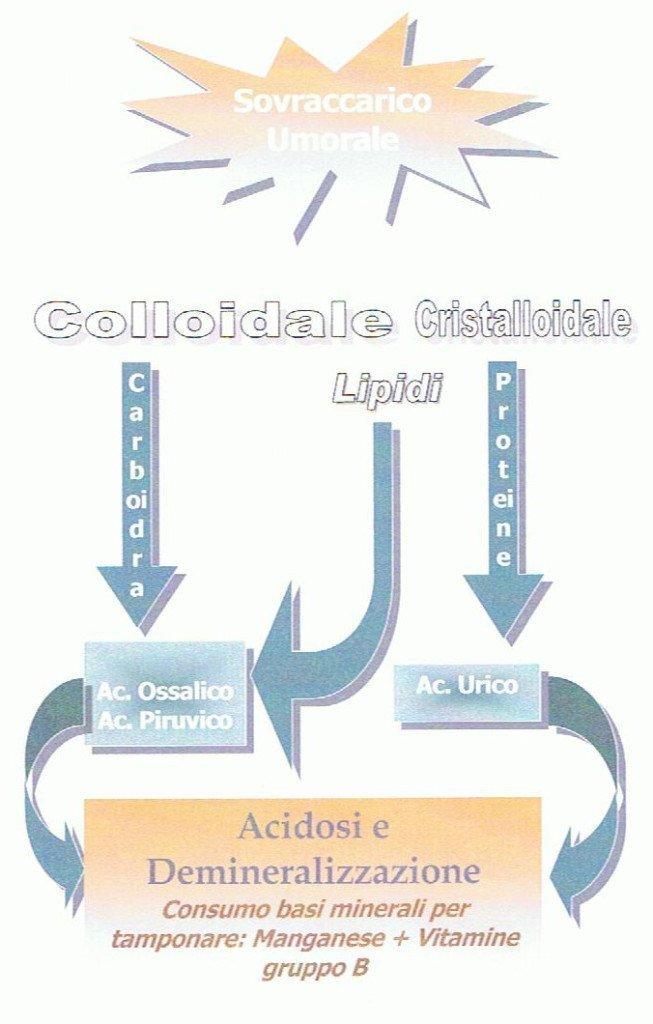 omotossicologia-2